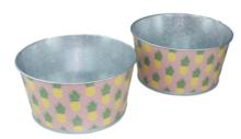 Bloempot Ananas - Set van 2 - Groen / Roze - Zink - Ø20x10 cm
